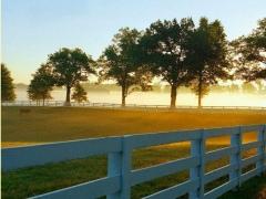 HD Fence Wallpapers 4.3 Screenshot
