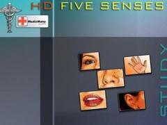 HD FIVE SENSES 1.0 Screenshot