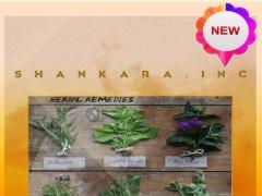 Herbal Medicine Plant 3.3 Screenshot