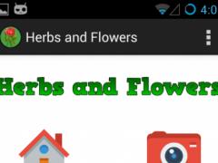 Herbs and Flowers 1.1 Screenshot