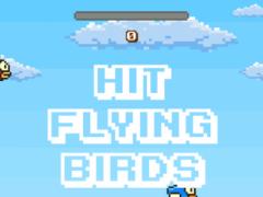Hit Flying Birds 1.0 Screenshot