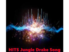 HITS Jungle Drake Song 1.0 Screenshot