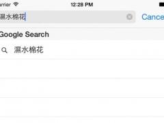 HK Slang 1.1 Screenshot