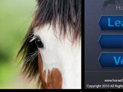 Horse 360 Bundle for Tablets  Screenshot