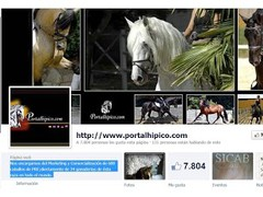 Horse Facebook 0.1 Screenshot