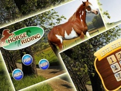 Horse Riding 2015 1.3.2 Screenshot