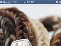 Horsehair Jewellery - Gold and Silver Equestrian Horse Jewelry 2 Screenshot