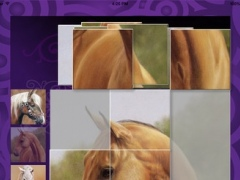 Horses Puzzle 1.0 Screenshot