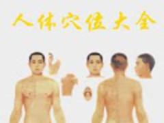 Human acupoint chart 4.8.6 Screenshot