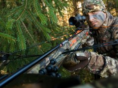 Hunting: Arrows and Bolts 1.1 Screenshot