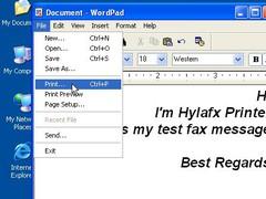 Hylafx Printer 1.1 Screenshot