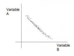 IB Biology Topic 1 1.0.0 Screenshot