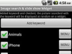 Image search & show Widget 10 Screenshot