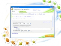 ImageConverter Plus 8.0.94 Screenshot