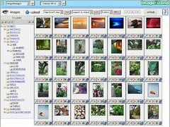 ImageIsland 3.00 Screenshot
