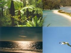 Impressions of New Zealand 1.0 Screenshot