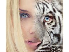 Insta Animal Face Morph 1.0 Screenshot