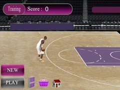 Instant Basketball pro2 1.11 Screenshot
