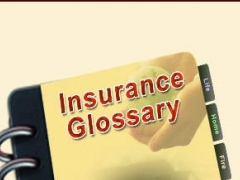 Insurance Terminology Glossary 1.0 Screenshot