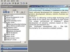 Intellexer Summarizer SDK 4.0.0.93 Screenshot