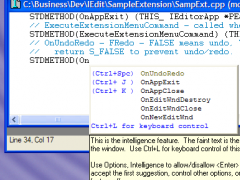 Intelligent Editor 1.1 Screenshot