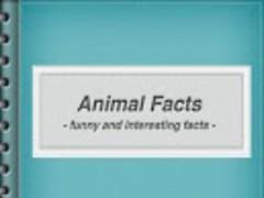 Interesting Animal Facts 1.0 Screenshot