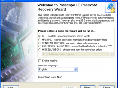 Internet Explorer Password Recovery 5.0.0 Screenshot