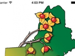Invasive Plant Atlas of New England 1.2.1 Screenshot