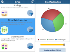 The IQ Test 5.5 Screenshot