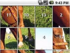 iSlider Horse Slide Puzzles 1.4 Screenshot