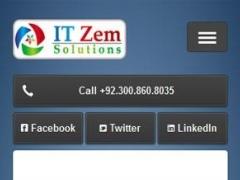 IT Zem Solutions 1.0 Screenshot