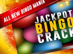 Jackpot Bingo Crack Free 1.2 Screenshot