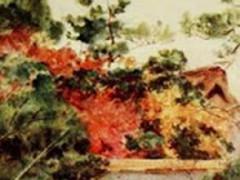 Japanese Garden Wallpapers 1.0 Screenshot
