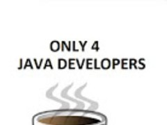 Java Developers Only 1.0.0 Screenshot