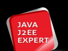 JAVA/J2EE Interview Expert 14.1 Screenshot