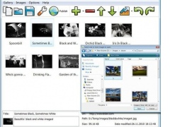 JavaScript Slider Image Gallery 1.0 Screenshot