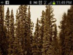 Jeep Live Wallpaper 1.2 Screenshot