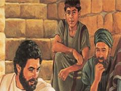 Jehovah Witness Bible 1.0 Screenshot