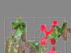 Jigsaw puzzle World championsh 1.0 Screenshot