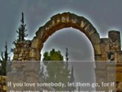 Kahlil Gibran's Quotes 1.0.3 Screenshot