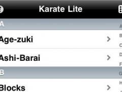 Karate Lite 2.0 Screenshot