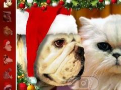 Kisstmas - Christmas Cards 1.0.2 Screenshot