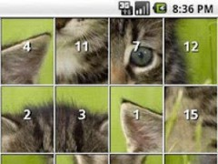 Kitten and Cat Puzzles 1.5 Screenshot