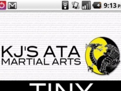 KJ's Martial Arts 1.399 Screenshot