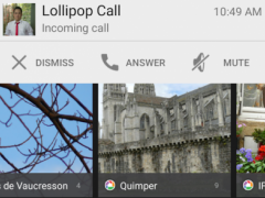 L-Call (incoming call style)  Screenshot