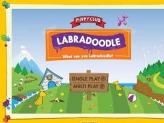 Labradoodle 1.0 Screenshot
