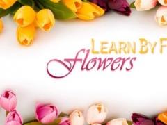 Learn By Fun Flowers Free 1.0.0 Screenshot