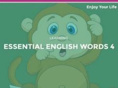 Learn English Word 1.0 Screenshot