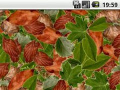 Leaves simple LWP 1.3.2 Screenshot