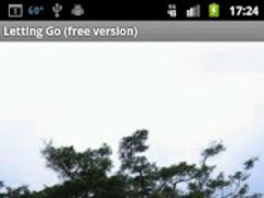 Letting Go (free version) 1.2 Screenshot